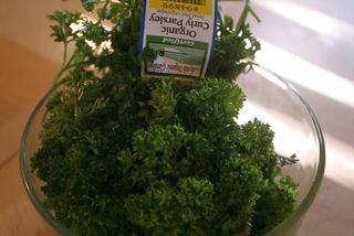 1parsley