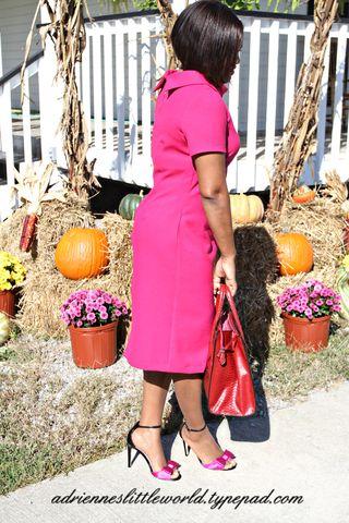Pink dress 6a