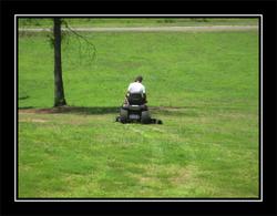 Aj_and_ac_grass